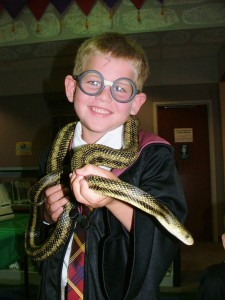 It's going to be a Harry Potter party this Jan. 19 at our Lake Branch. (Don't worry. No snakes are invited.)