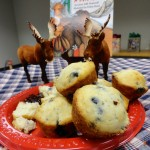 "Terri answers the question: ""What Happens when you give a moose a muffin?"" Answer: It's delicious."
