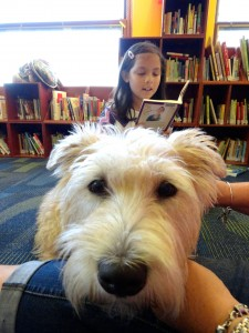 Teah reads to our newest Paws to Read dog, Hattie.