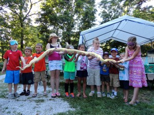 Eleven kids help hold the python from Herps Alive at the Summer Reading Finale Party.