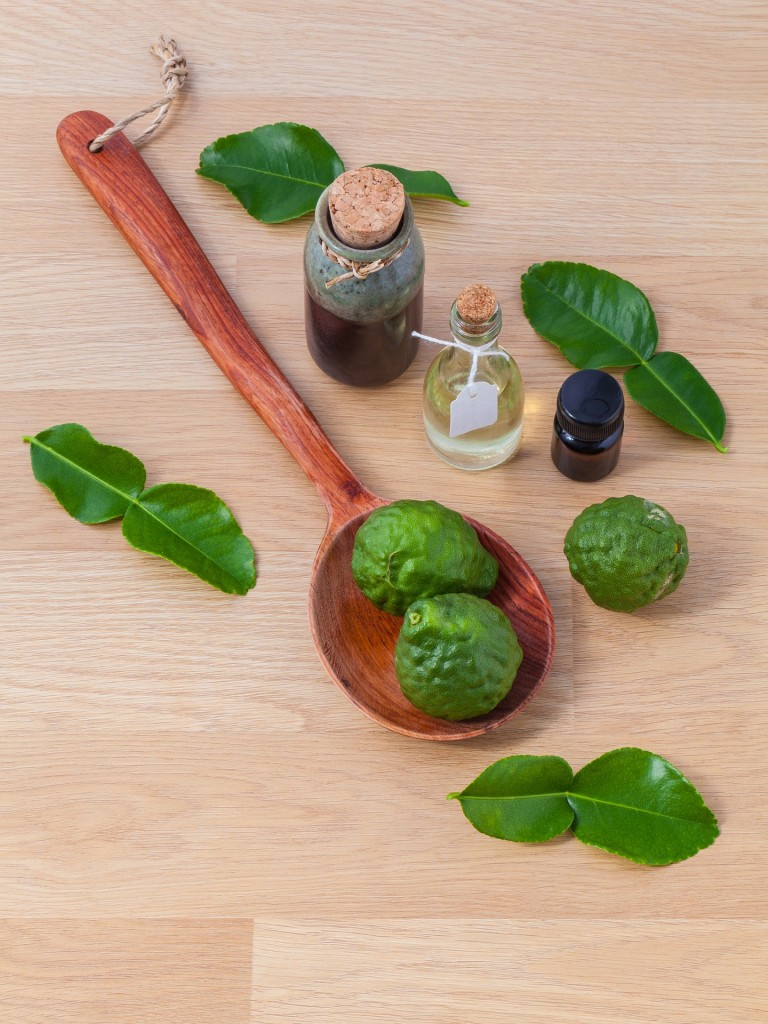 Learn about natural remedies and homeopathic medicines with Remedy Jane at Mentor Public Library.