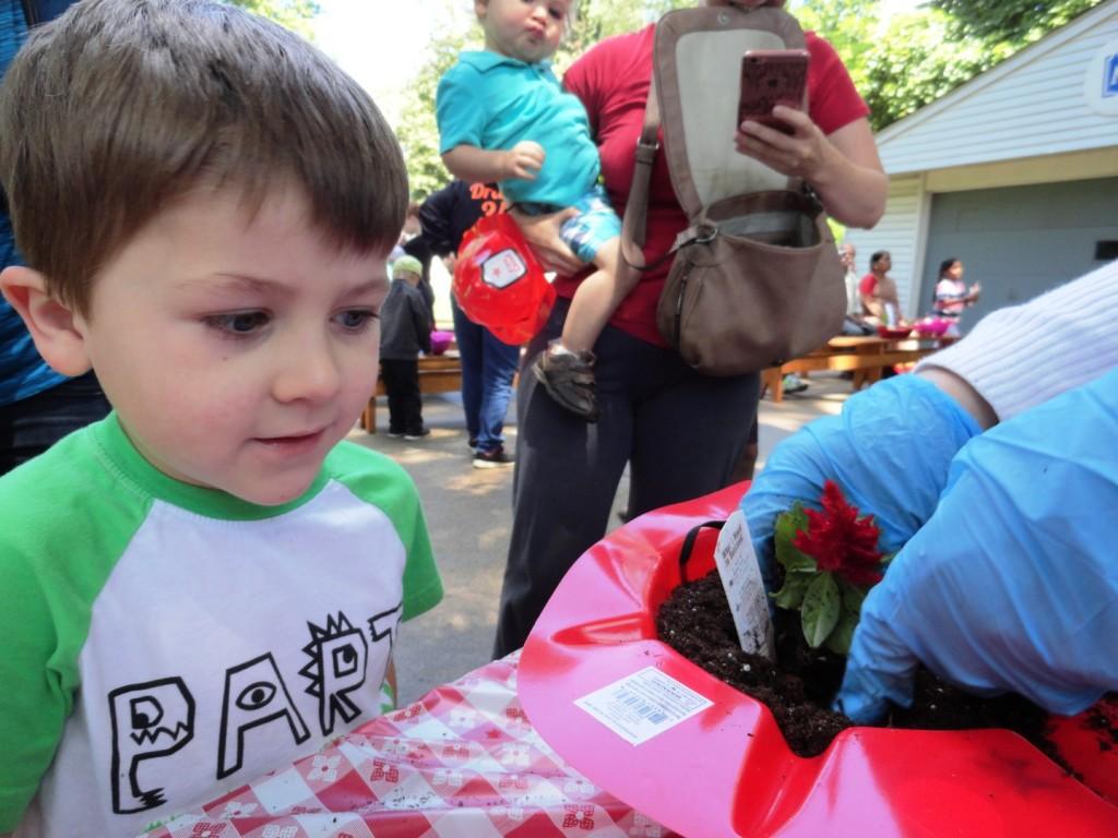 Gabe picks a red flower for his planter.