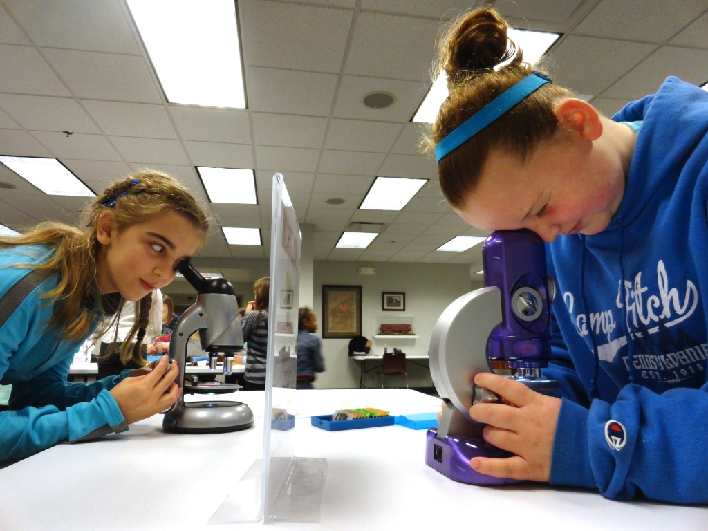 Sadie Shea and Mallory Chicone use microscopes to get closer looks at hair, cell samples and more.