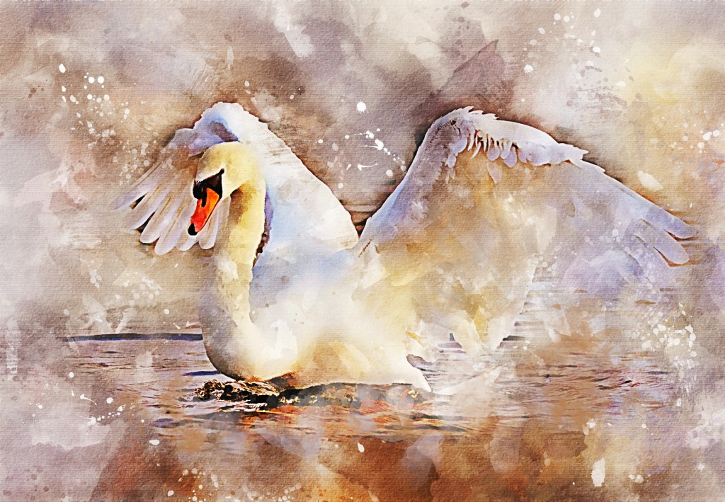 This could be you—not the swan, but the painter. Explore the world of watercolor with the new art club at our Lake Branch.