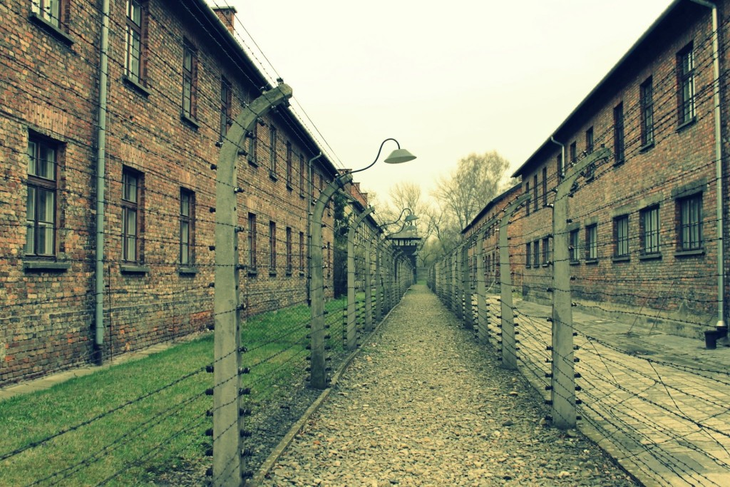 Auschwitz, the most notorious of Nazi Germany's death camps, will be the subject of our annual International Holocaust Remembrance Day lecture.