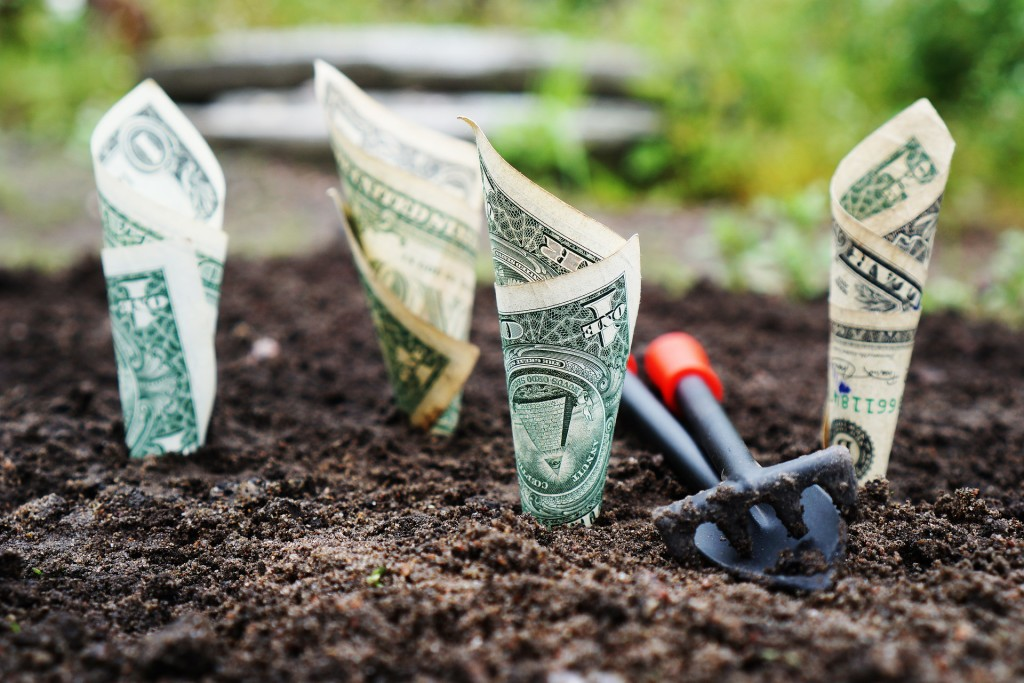 Learn how to make your money grow during a special program on personal investing at Mentor Public Library.