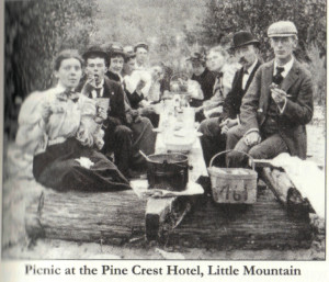 Pine-crest-hotel-picnic