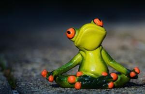 ! Yoga Frog