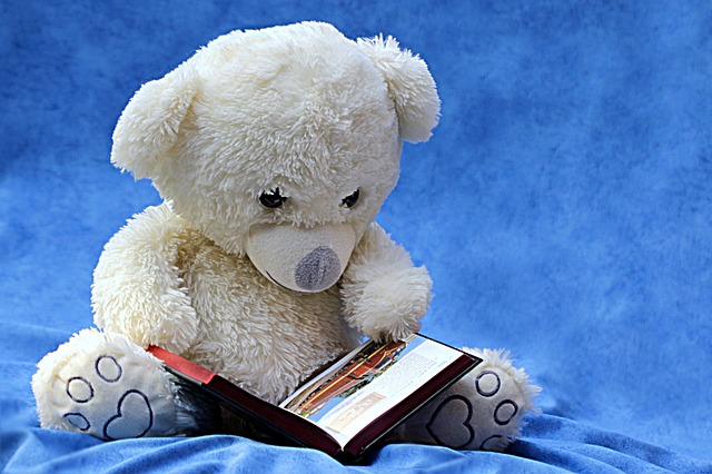 Teddy Bear & Book