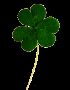 clover St. Patrick