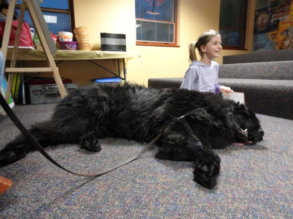 Big dog. Little girl. Leah reads Junie B. Jones to Wilson, a 180-pound Newfoundland.
