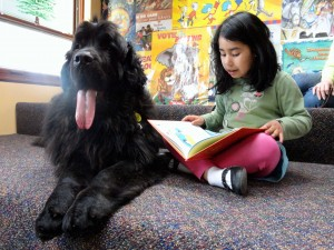 Big dog, little girl. Norman, a Newfoundland puppy, listens while Leah Reamsbottom reads to her.