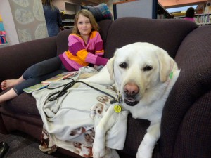 Ava Dahlhofer pets Haylee while she's between books.
