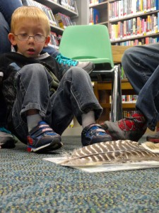 Zach looks at the different types of feathers that grow on a turkey.