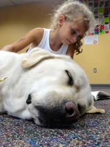Paws to Read returns to Mentor Public Library in January.