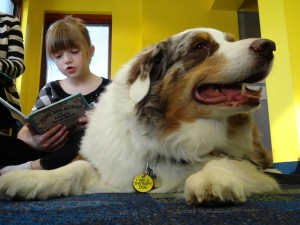 Claire reads to Ruckus during a Paws to Read session at Mentor Library.