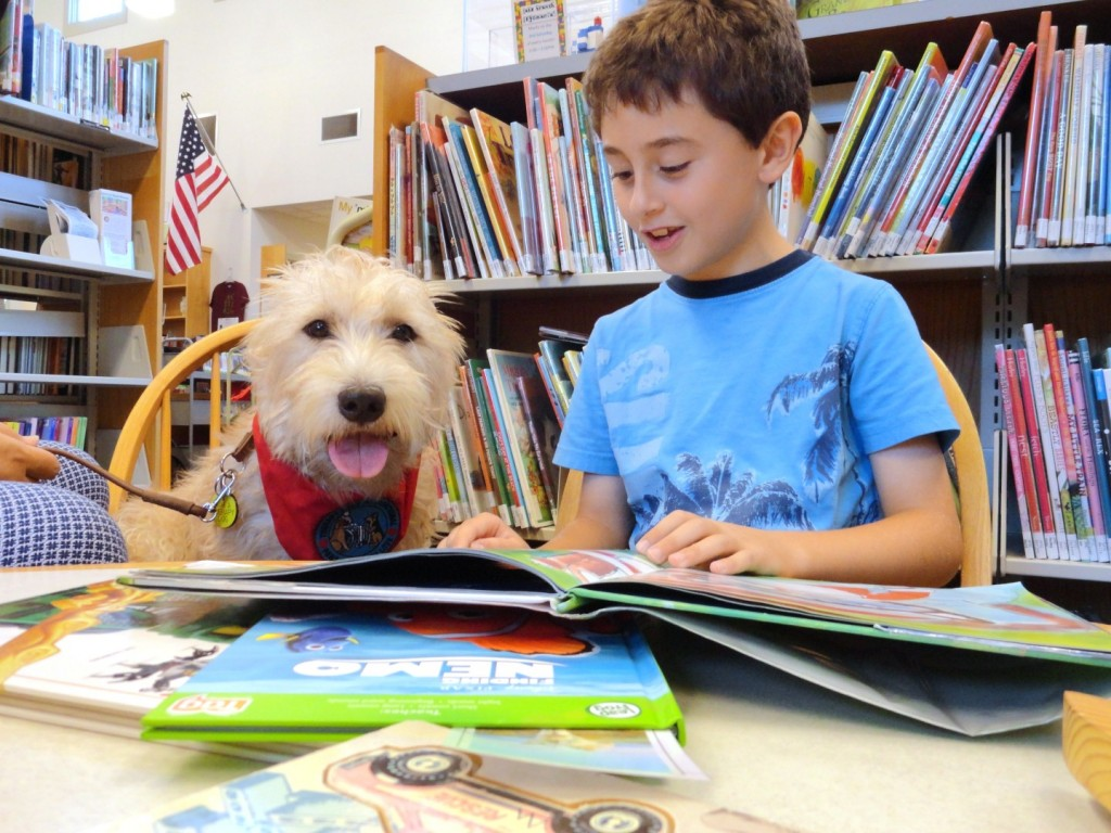 Michael reads a Pete the Cat book to Hattie during Paws to Read. (Hattie, for her part, didn't object to the cat book.)