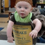 Will wears the perfect costume for a baby, a mandrake from Harry Potter. If he cries, it's just part of the outfit.