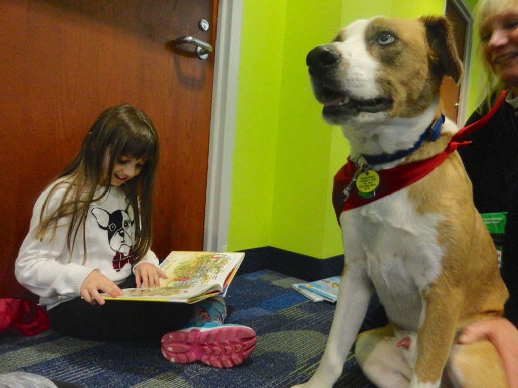 Rudder (our newest Paws to Read volunteer) listens to Maddie as she reads.