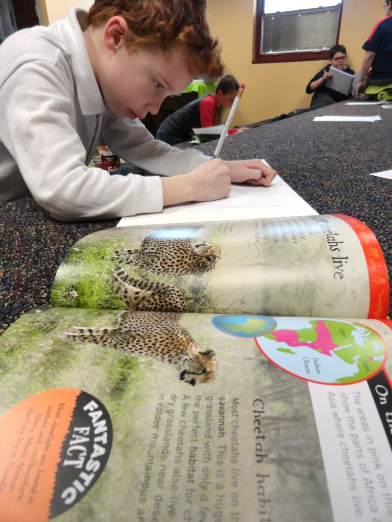 Andrew sketches the cheetah's fur using photos for inspiration during the Studio MPL meeting on Monday.