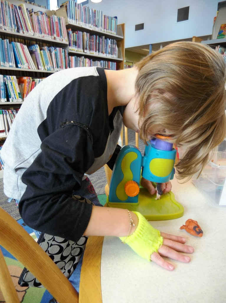Kids can explore the microscopic world at Lake Branch's new STEAM Station.