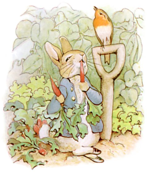 Kids can recreate the story of Peter Rabbit with yoga poses during a special story time at Mentor Public Library.