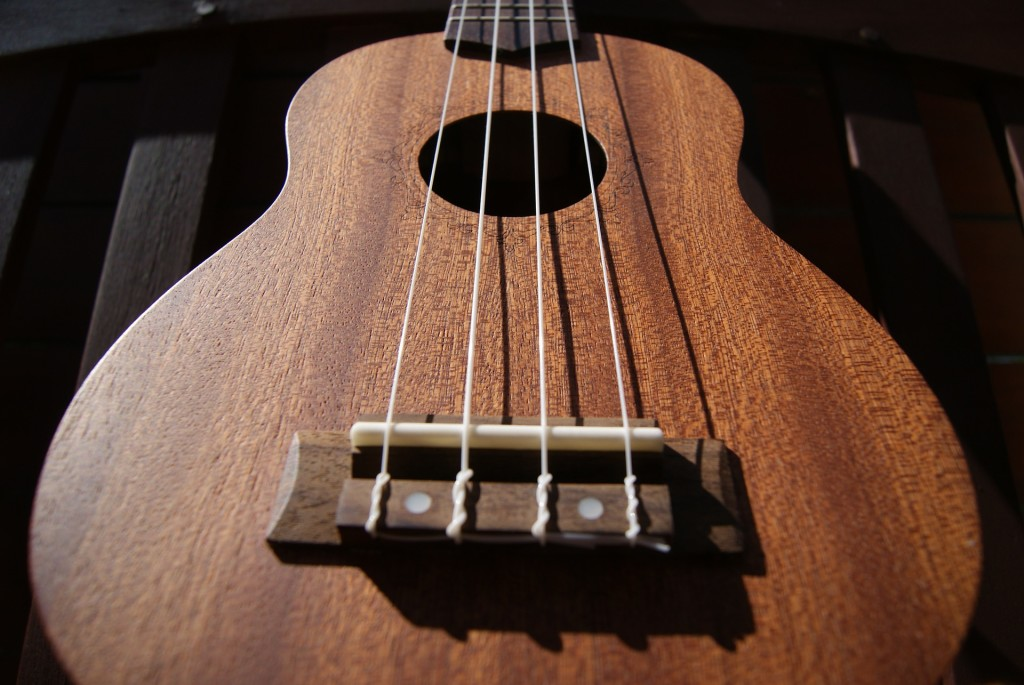 Borrow ukuleles (along with a music book and tuner) from Mentor Public Library.
