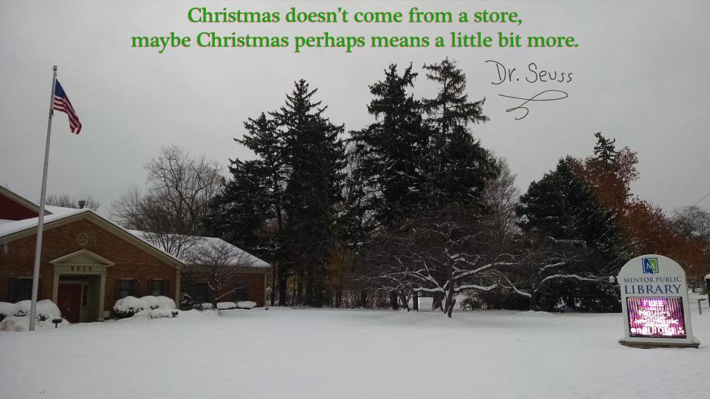 Dr Seuss Christmas unbranded