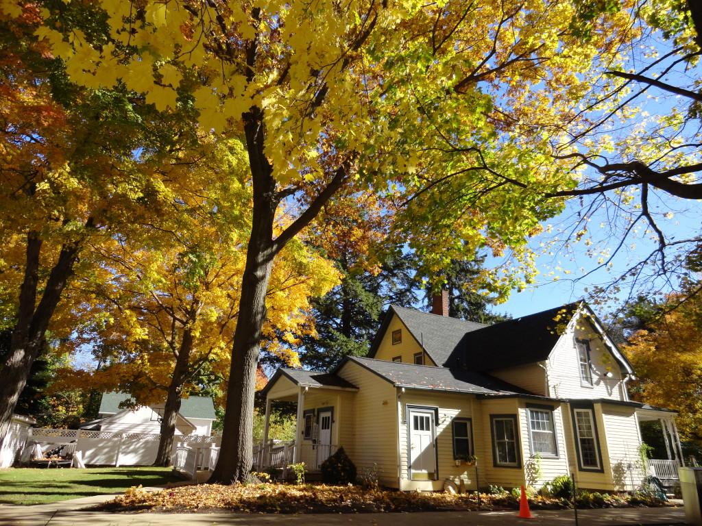 Read House Autumn