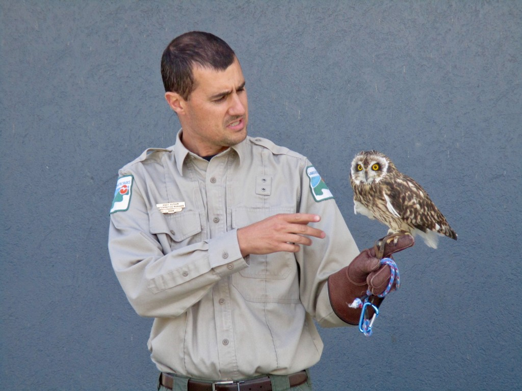 Andy from Lake Metroparks introduces everyone to Savanna, a short-eared owl and one of the Metroparks' animal ambassadors.