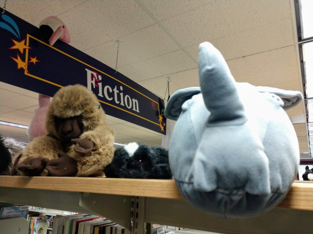 Kids can symbolically adopt one of the stuffed animals that reside at the library during our virtual adopt-a-critter program.