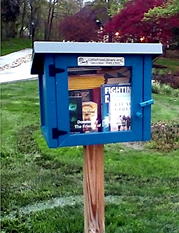 A blue Little Free Library box filled with donated books on a pole at a local park..