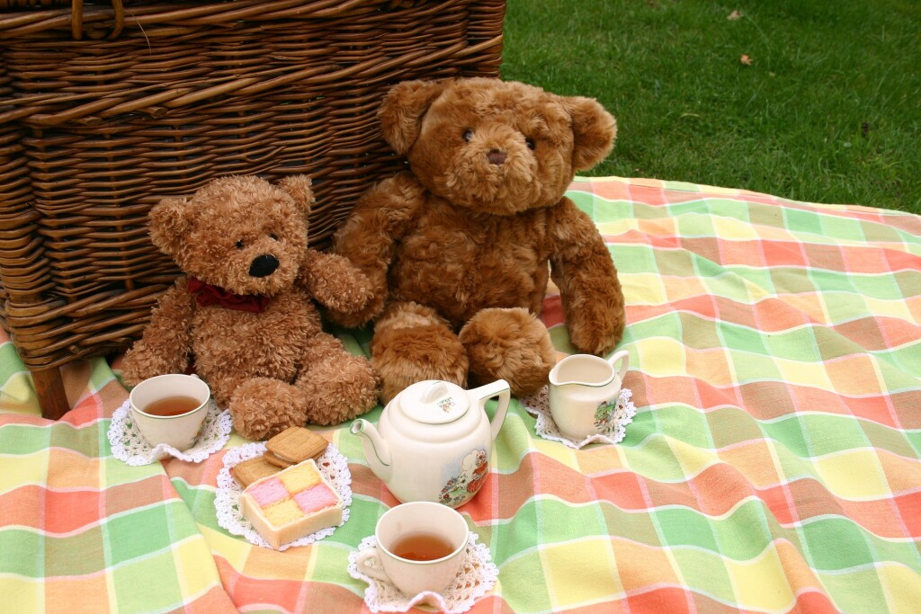 Kids are invited to our online teddy bear picnic on Friday, April 16. It's going to be bear-y fun!